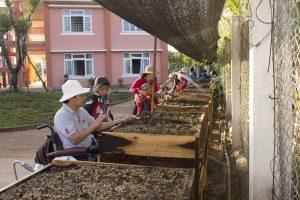 Gardening at Maison Chance Vietnam