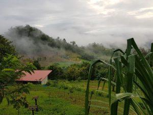 Karen state landscape