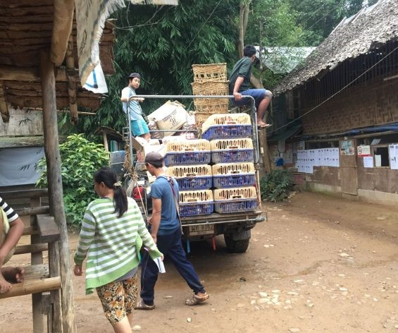 Myanmar, refugees, food supplies